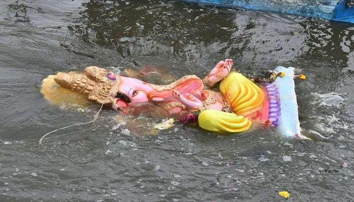 ഗണേശ വിഗ്രഹ നിമജ്ജനം; ആയിരക്കണക്കിന് മത്സ്യങ്ങള് ചത്തുപൊങ്ങി